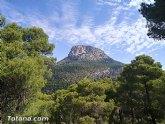 La Comunidad vuelve a reclamar al Gobierno de Espa�a la declaraci�n de Sierra Espu�a como Parque Nacional