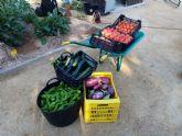Cáritas y Asamblea Comarcal de Cruz Roja en Molina de Segura reciben las hortalizas recolectadas en el Huerto de Ocio La Estación