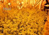 La Guardia Civil desmantela un punto de venta directa de marihuana a consumidores
