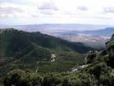 Medio Ambiente organiza para el sábado la ruta guiada ´El otoño en la selva de Espuña´