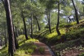 El Territorio Sierra Espuña celebra la renovaci�n de la Carta Europea de Turismo Sostenible
