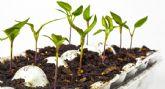La asociaci�n Meles, pone su pequeña semilla en Sierra Espuña