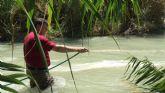 Salud Pública inicia en Ojós el primer tratamiento piloto contra la mosca negra en la Región