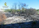 La Guardia Civil detiene a un octogenario como presunto autor de cuatro incendios forestales