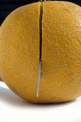 Los productores murcianos garantizan el suministro de melón y sandía pese a la granizada del lunes