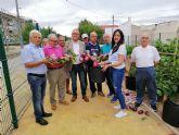 La Asamblea Comarcal de Cruz Roja en Molina de Segura recibe las hortalizas recolectadas en el Huerto de Ocio La Estación