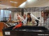 Totana acoge el 6° Campeonato Ornitológico Regional Murciano