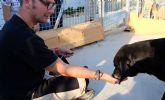 La Fundación Jesús Abandonado inicia un programa que busca mejorar la calidad de vida de personas sin hogar y animales maltratados