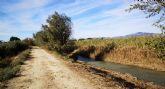 El Ayuntamiento, la CHS, la asociación amigos del patrimonio de Lorquí y ANSE sientan las bases para la recuperación ambiental de la ribera del río