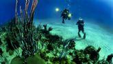 Andalucía será pionera en la creación de talleres destinados a la regeneración de arrecifes de coral