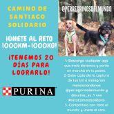 Purina y PeRRegrinos del Mundo lanzan la iniciativa #retoCaminoSolidario