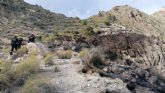 Efectivos del Infomur apagan un conato de incendio forestal en Ulea