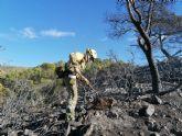 Contin�an los trabajos de extinci�n del incendio en la Sierra de Carrascoy, que sigue activo