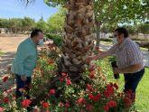 San Javier se suma a la campana regional de vigilancia y control del mosquito tigre
