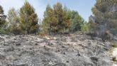 Apagan un conato de incendio forestal en el paraje Puente Hellín de Moratalla
