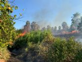 Bomberos trabajan en el incendio declarado en un huerto con viviendas cercanas en Beniel