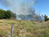 Incendio de canas y matorral en el margen del río en la pedanía de La Algaida (Archena)