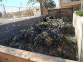 Denuncia de la presencia de un gas tóxico en la playa de los urrutias, por la materia acumulada