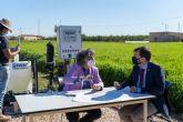 Investigan la capacidad de la cebada como filtro verde para el Mar Menor