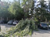 Se cierra y desaloja el parque municipal �Marcos Ortiz� por la ca�da de un �rbol a consecuencia de los efectos del viento, que ha da�ado dos veh�culos