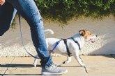 La Concejal�a de Bienestar Animal ofrece una serie de recomendaciones para proteger a las mascotas de las altas temperaturas