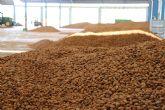La campaña de la almendra está finalizando en Vega de Pliego con muy buena calidad del producto