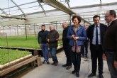 La Comunidad concede a Puerto Lumbreras más de 350.000 euros para dinamizar el empleo en el municipio
