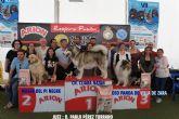 El Día de Perro reconoce la labor de Quinto, perro de rescate de la UME, y de la protectora de Los Belones