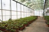 Charla técnica sobre fertilización de cultivos protegidos