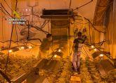 La Guardia Civil desmantela en Abarán una plantación indoor y detiene a sus dos responsables
