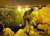 La Guardia Civil desmantela un invernadero subterráneo de con cerca de un millar de plantas de marihuana