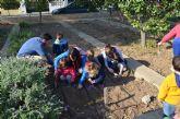 La visita de los alumnos de la Guardería municipal al huerto escolar inauguró los actos para celebrar los días del Árbol y del Agua