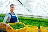 BASF y AgBiome trabajan conjuntamente para lanzar un nuevo fungicida biológico
