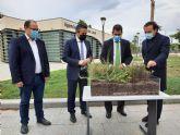 La azotea de la Agencia de Desarrollo Local será un jardín en altura con 192 metros cuadrados de vegetación