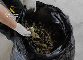 La Guardia Civil sorprende a dos personas en Beniel con más de cuatro kilos de cogollos de marihuana