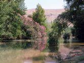 Medio Ambiente organiza actividades para este fin de semana en Cañaverosa y en la ermita de Santa Leocadia
