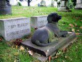 Proponen la creación de un Cementerio para animales de compañía en Totana