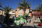 Realizan labores de poda y mantenimiento de la población de palmeras en la vía pública, y parques y jardines de la población