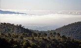 Una mod�lica restauraci�n sit�a Sierra Espuña como ejemplo de ecoturismo