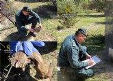 La Guardia Civil investiga a dos personas por el uso ilegal de venenos