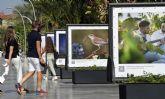 Exposición de fotografías 'Jumilla El Equilibrio Perfecto' en la Avenida Libertad de Murcia
