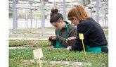 Cultura alimentaria y consumo sostenible para el futuro de la alimentación