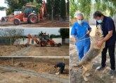 Saorín: 'En el centro de acogida de animales se están realizando mejoras por importe de 23.000 euros'