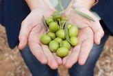 Aceitunas Torrent presenta Oliva Clan, su nueva línea de producto, en Gulfood Dubái 2020