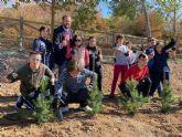 Assido protagoniza hoy la plantación de árboles en Terra Natura dentro del Plan Foresta