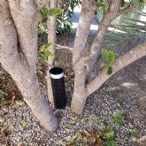 El Ayuntamiento de Puerto Lumbreras inicia una campana de prevención contra el mosquito tigre