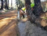 El agua vuelve a llenar las acequias del Palmeral de Santiago y Zaraiche.