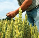 Fundación Ingenio preside el encuentro virtual ´La Agricultura del Futuro: producir más con menos´