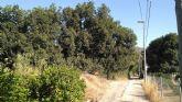 Huermur denuncia que el Ayuntamiento pretende entubar un tramo del Azarbe de Tierra Roya