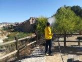 Campaña de fumigación contra la procesionaria de los pinos